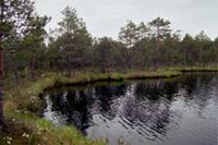 Tolkāja ezers